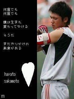 坂本勇人の画像 p1_10